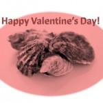 Valentine Oyster
