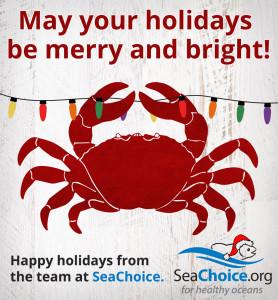 Seachoice-Holidays-1