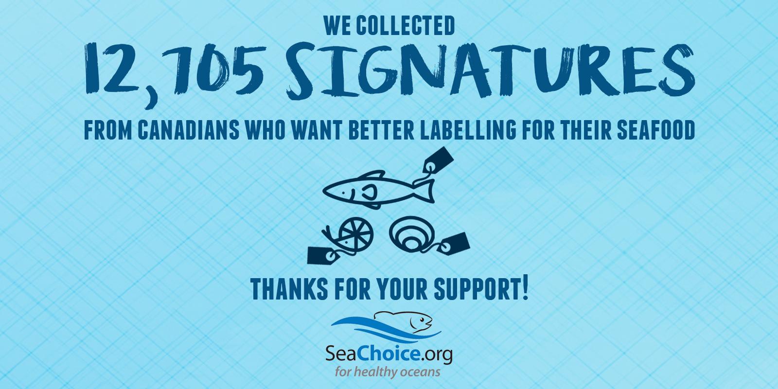 Seahugger Blog   SeaChoice
