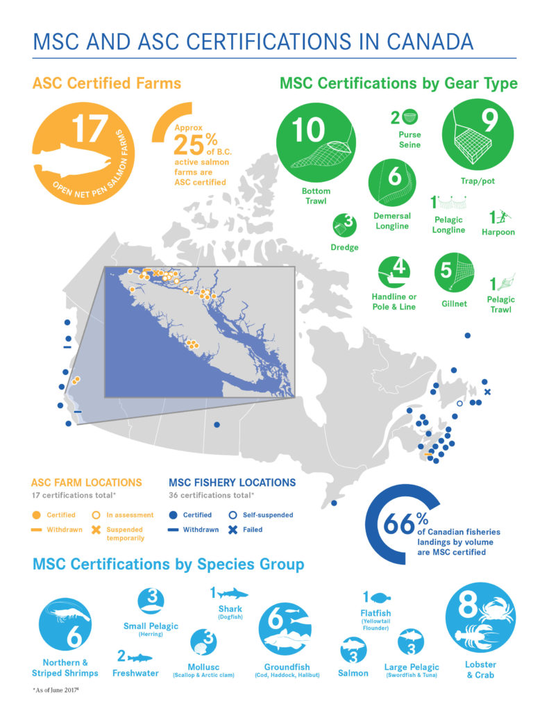 Whats behind the label seachoice msc since 2008 36 msc certifications have been granted in canada covering 80 of fisheries landings by value and 66 of landings by volume xflitez Choice Image