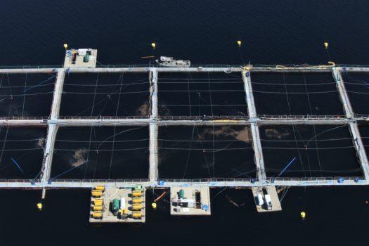 Photo: Kelly Roebuck, Aquaculture net pen
