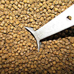 Photo: Spencer Neuharth, USFWS, fish feed