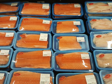 Atlantic salmon in trays