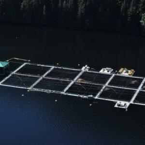Photo: Kelly Roebuck, Aquaculture net pen BC